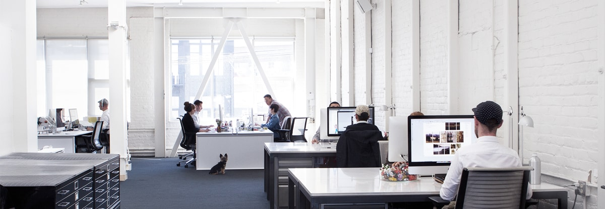 corporate_office