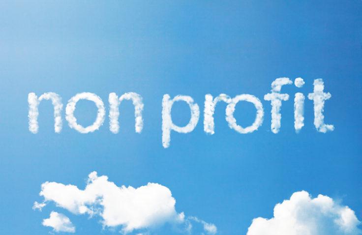 Non-Profit Corporation
