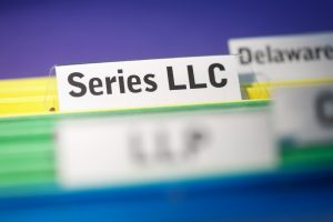 business type - series LLC
